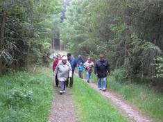 Cestou naBábin vrch