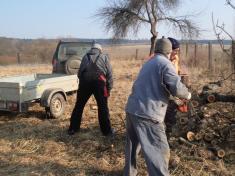 Sázení stromků 2015